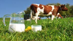 можно ли молоко на кето диете