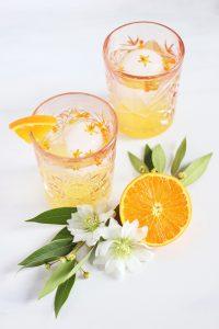 Вода с кусочками апельсина . Что пить на кето?